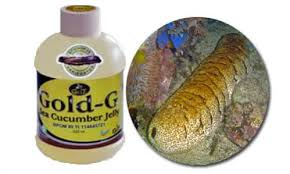jelly gamat gold-g darah tinggi 1